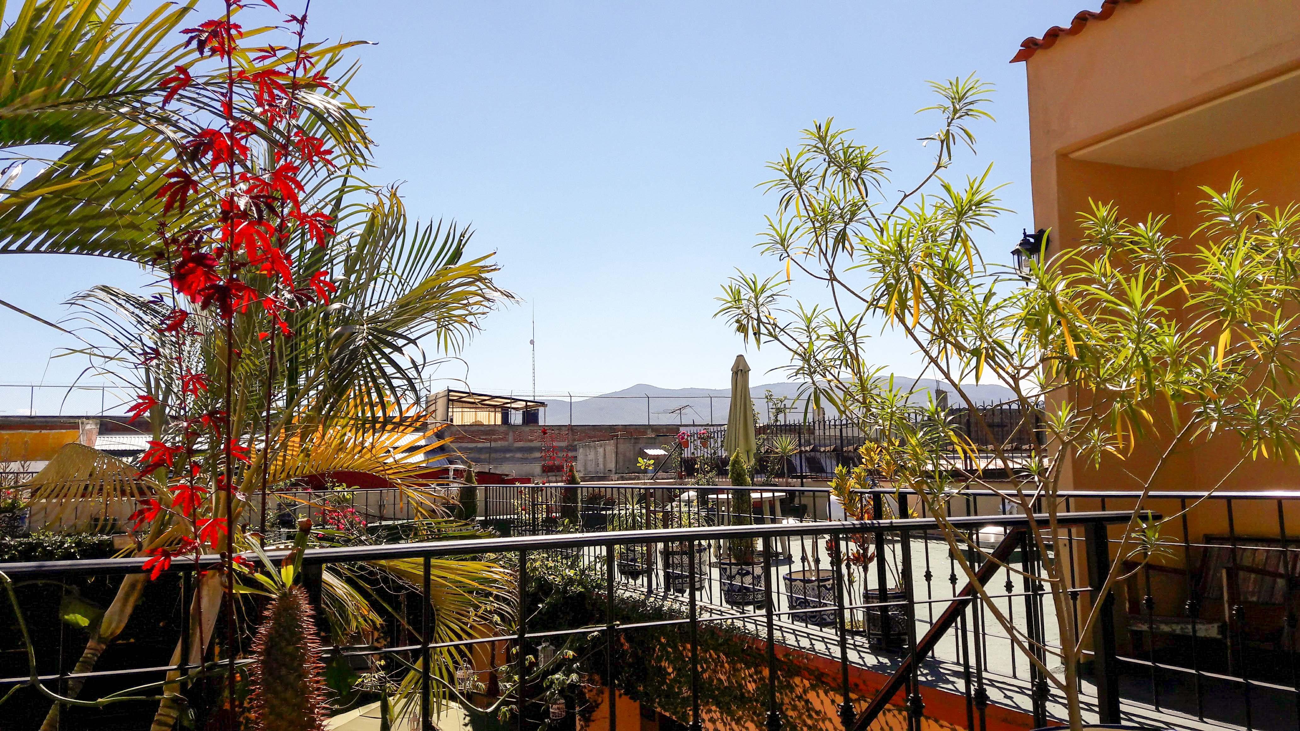Die Aussicht von Annina Reussers Terrasse. – Bild: Annina Reusser